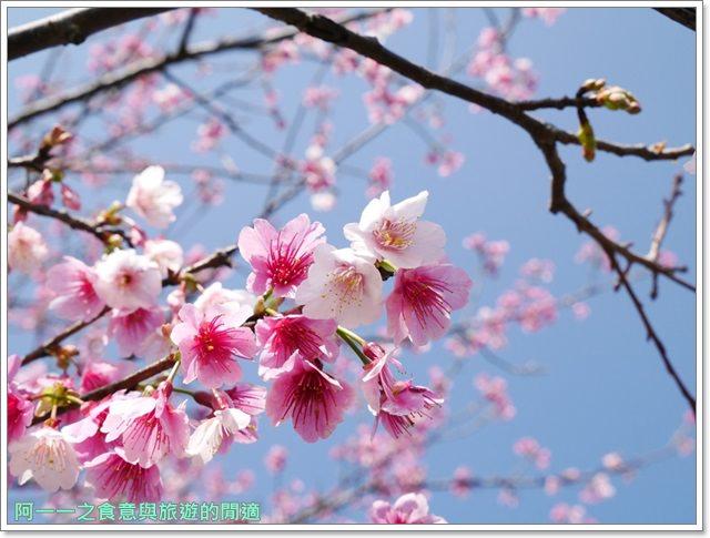 台東美食景點初鹿牧場初鹿鮮乳鮮奶櫻花祭放山雞伴手禮image025