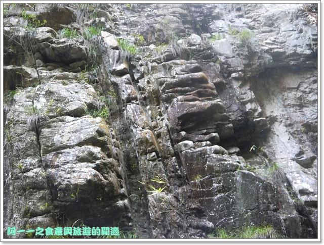 南投武界段木香菇一線天image069
