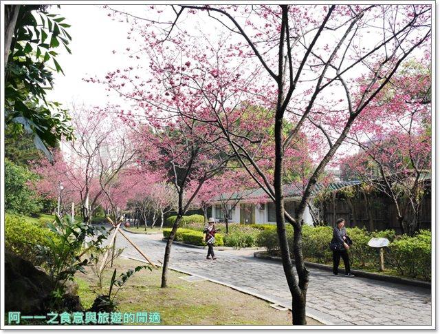 捷運中正紀念堂景點櫻花海綿寶寶暢遊比奇堡特展image063