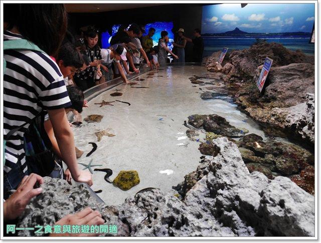 沖繩美麗海水族館.海洋博紀念公園.海豚秀.親子旅遊image024