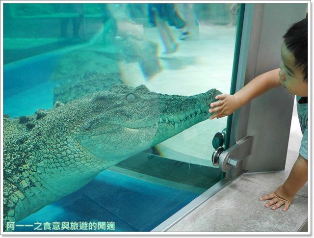 大阪旅遊.expocity.nifrel.海遊館.親子.動物園image003