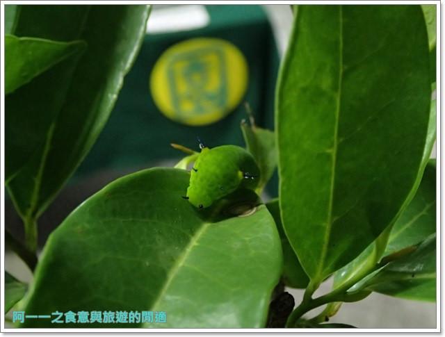 花蓮鯉魚潭螢火蟲賞蝴蝶青陽農場攝影花蓮旅遊image011