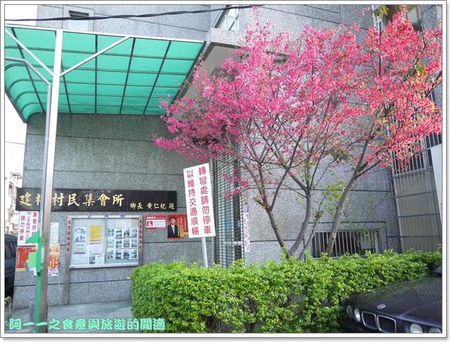 image057桃園客家文化館櫻花