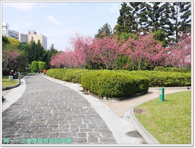 捷運中正紀念堂景點櫻花海綿寶寶暢遊比奇堡特展image067