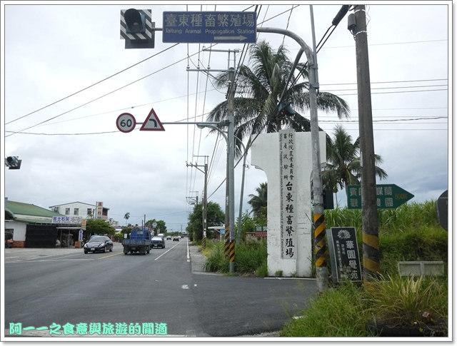 台東住宿民宿田裡的後院鹿野熱氣球image003