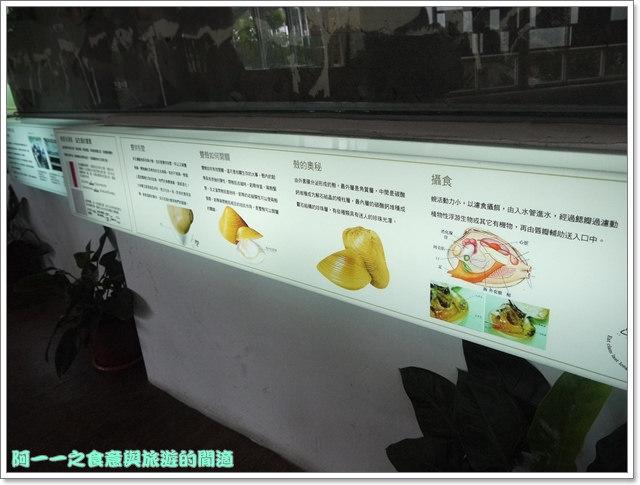 花蓮壽豐景點立川漁場黃金蜆image021