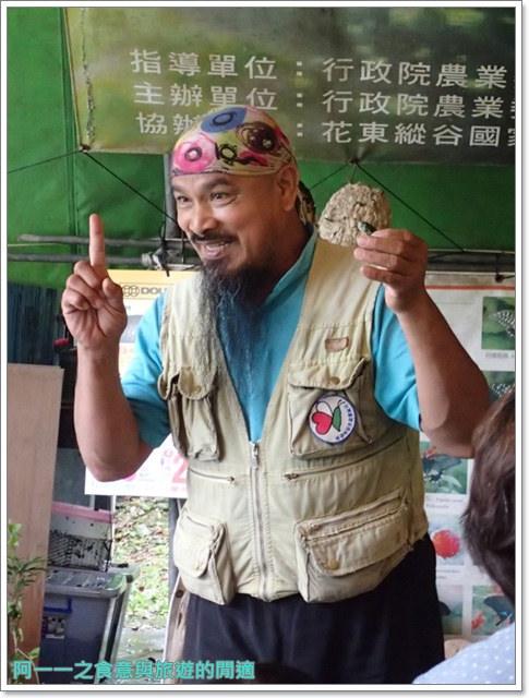 花蓮鯉魚潭螢火蟲賞蝴蝶青陽農場攝影花蓮旅遊image015