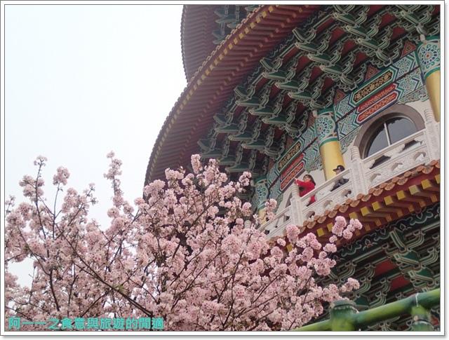 淡水天元宮吉野櫻花交通公車拍攝攻略懶人包image022