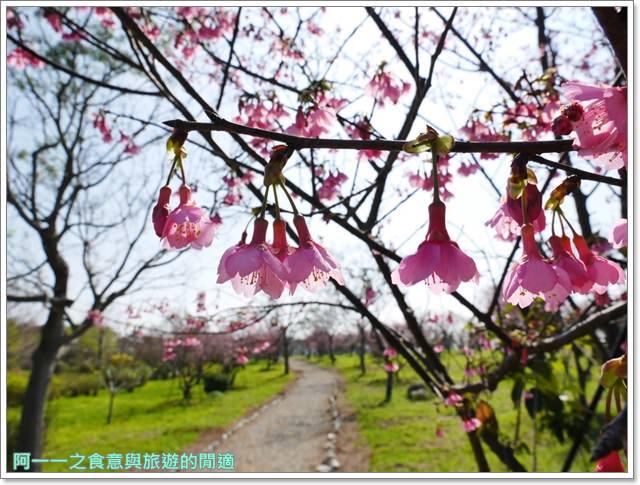 台東美食景點初鹿牧場初鹿鮮乳鮮奶櫻花祭放山雞伴手禮image024