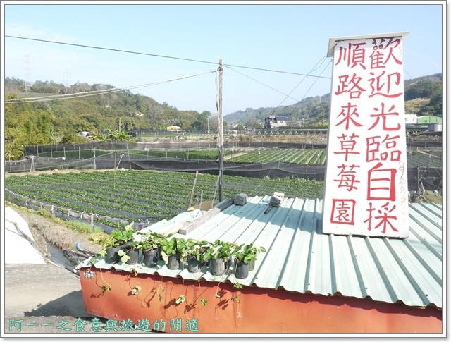 苗栗大湖草莓酒莊花間集image009