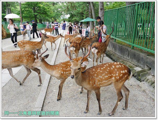 奈良.斑鳩一日卷.鹿.猿澤池.興福寺.五重塔image034