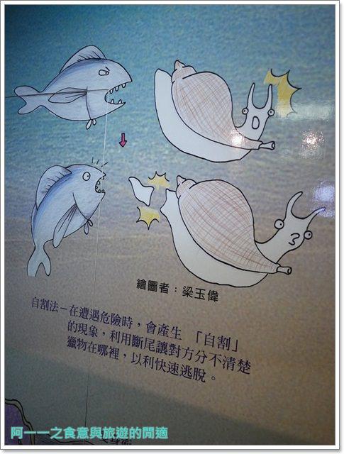 台東成功景點三仙台台東縣自然史教育館貝殼岩石肉形石image016
