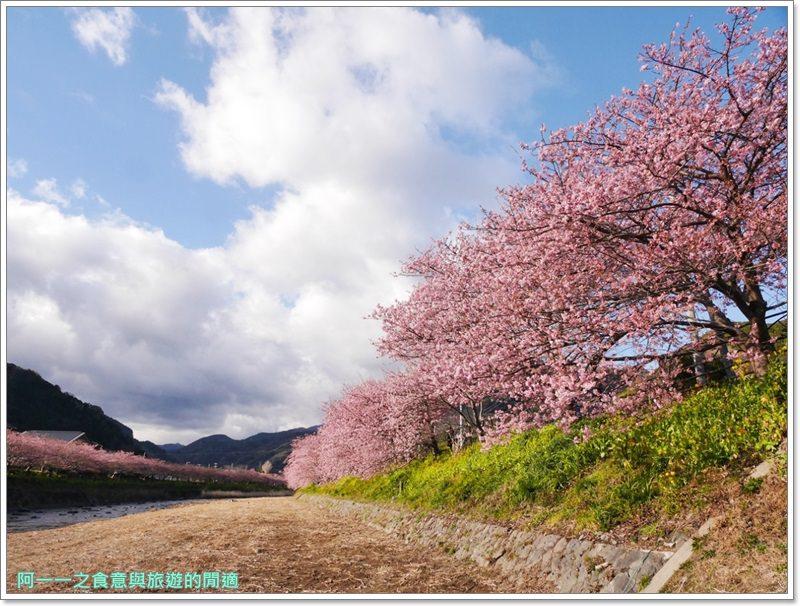 河津櫻.靜岡伊豆.日本自助旅遊.交通.攻略image001