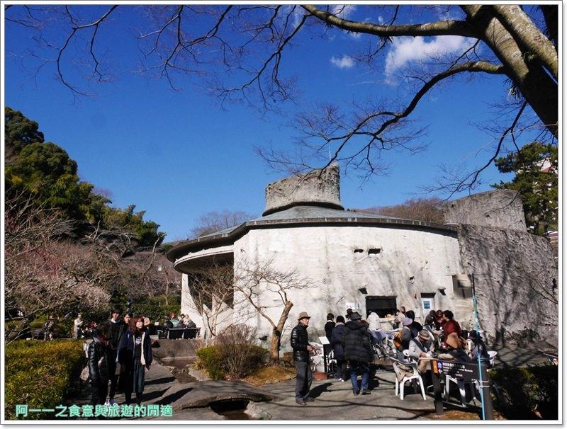 靜岡旅遊.熱海梅園.來宮站.賞花.梅花image050