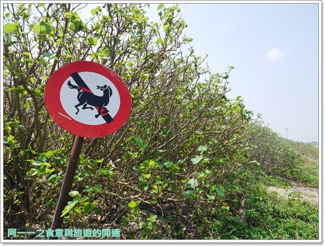 苗栗旅遊.竹南濱海森林公園.竹南海口人工濕地.長青之森.鐵馬道image025