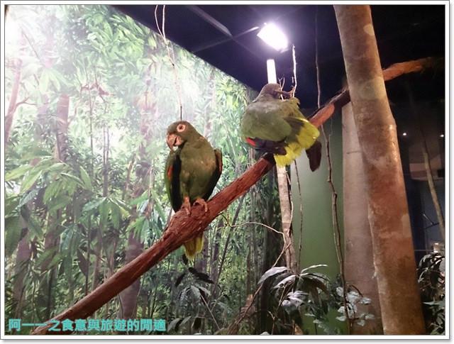 台中親子旅遊景點木乃伊國立自然科學博物館恐龍渾天儀水鐘image026