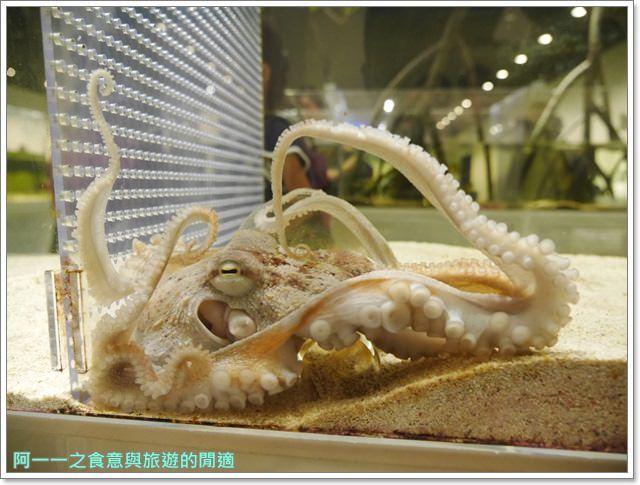大阪旅遊.expocity.nifrel.海遊館.親子.動物園image015