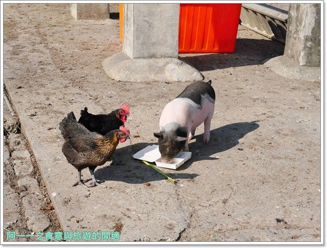 台東美食景點初鹿牧場初鹿鮮乳鮮奶櫻花祭放山雞伴手禮image047
