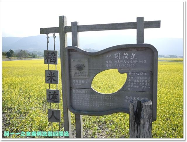 image047池上伯朗大道金城武