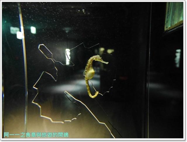 大阪旅遊.expocity.nifrel.海遊館.親子.動物園image027