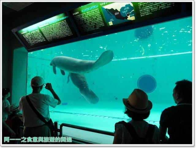 沖繩美麗海水族館.海洋博紀念公園.海豚秀.親子旅遊image064