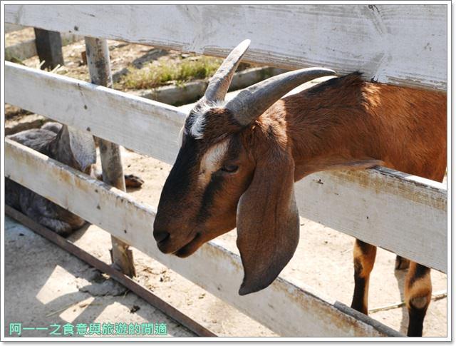 台東美食景點初鹿牧場初鹿鮮乳鮮奶櫻花祭放山雞伴手禮image041