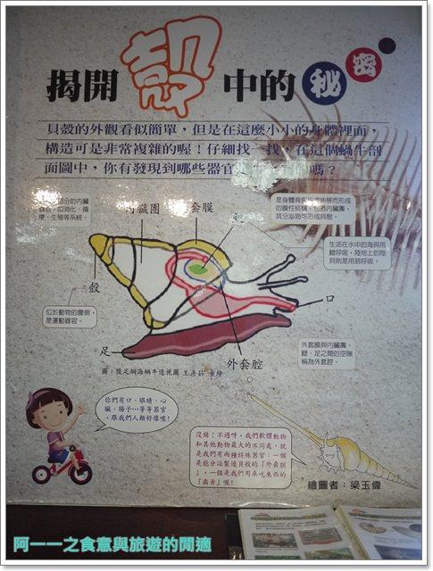 台東成功景點三仙台台東縣自然史教育館貝殼岩石肉形石image015