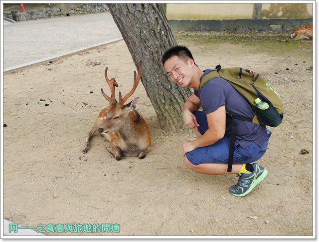 奈良.斑鳩一日卷.鹿.猿澤池.興福寺.五重塔image027