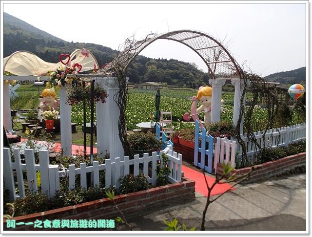 陽明山竹子湖海芋大屯自然公園櫻花杜鵑image091