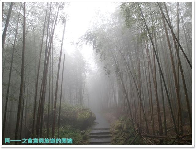南投溪頭自然教育園區台大image109