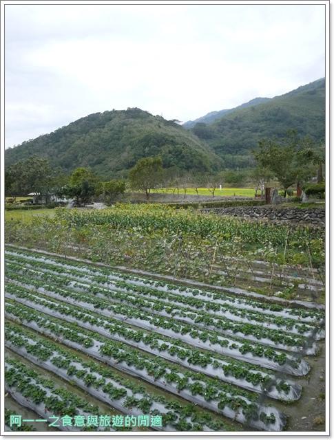 台東關山美食關山臭豆腐親山農園草莓冰淇淋image029