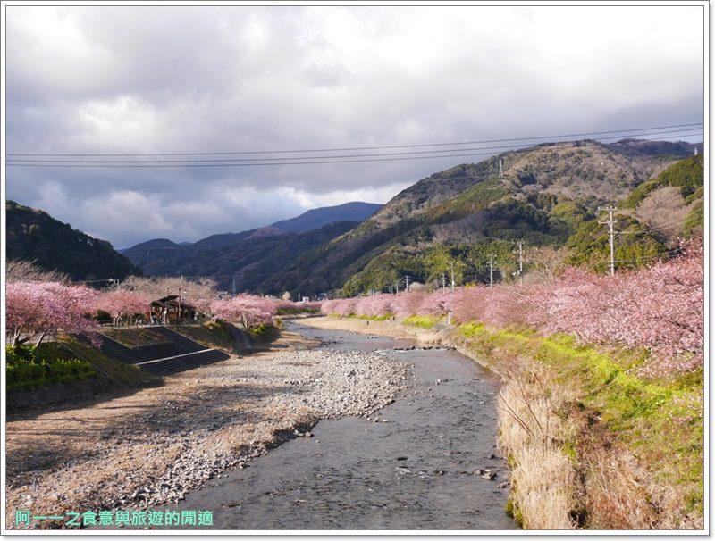 河津櫻.靜岡伊豆.日本自助旅遊.交通.攻略image002