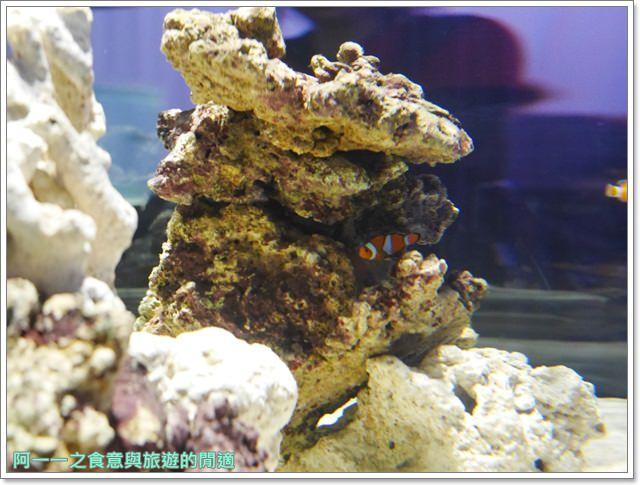 大阪旅遊.expocity.nifrel.海遊館.親子.動物園image011