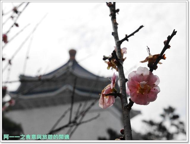 捷運中正紀念堂景點櫻花海綿寶寶暢遊比奇堡特展image076
