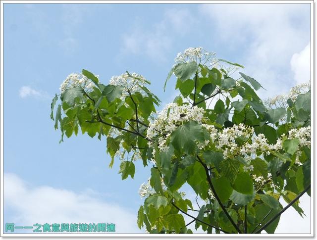 花蓮景點雲山水東華大學image023
