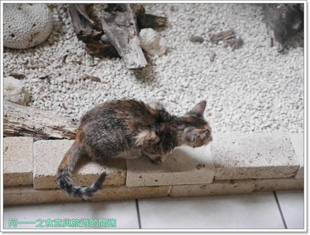 沖繩名護住宿.Hotel-Yugaf-Inn-Okinawa.火腿隊.水族館image007