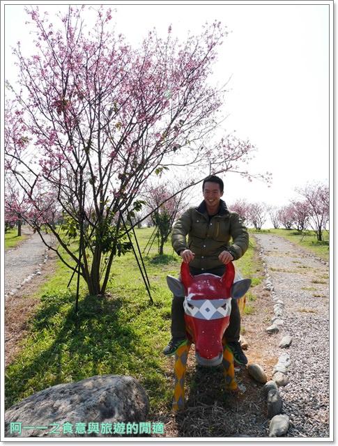 台東美食景點初鹿牧場初鹿鮮乳鮮奶櫻花祭放山雞伴手禮image031