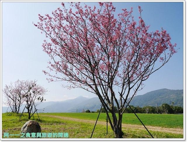 台東美食景點初鹿牧場初鹿鮮乳鮮奶櫻花祭放山雞伴手禮image027