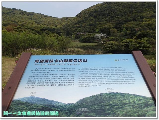 陽明山竹子湖海芋大屯自然公園櫻花杜鵑image009