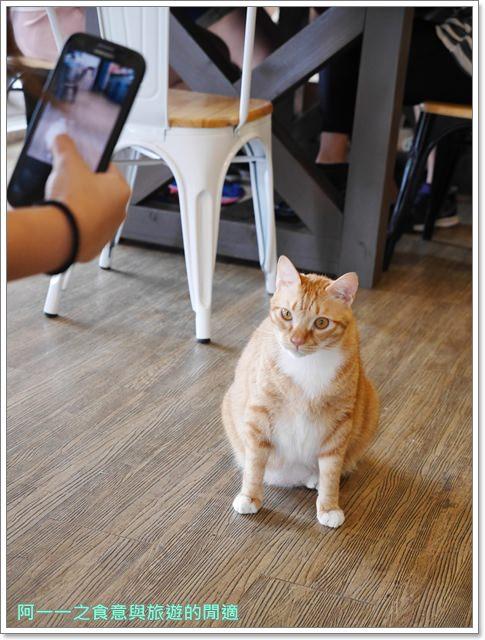 高雄貓餐廳.捷運中央公園站美食.描屋.早午餐.下午茶image025