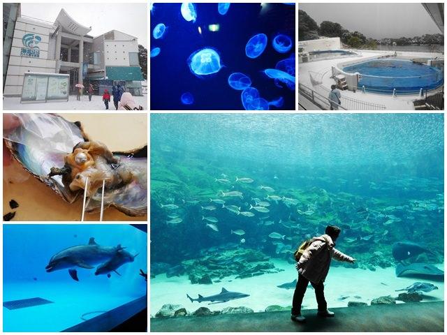 長崎景點 西海國家公園-九十九島水族館 挖珍珠體驗~玩日本九州送北海道之旅