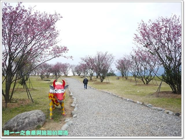 image069初鹿牧場櫻花