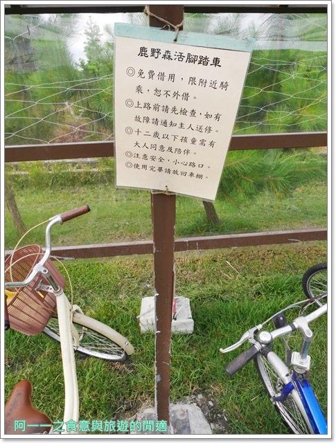 鹿野森活民宿.台東熱氣球.住宿.早餐.鸞山.貓咪image019