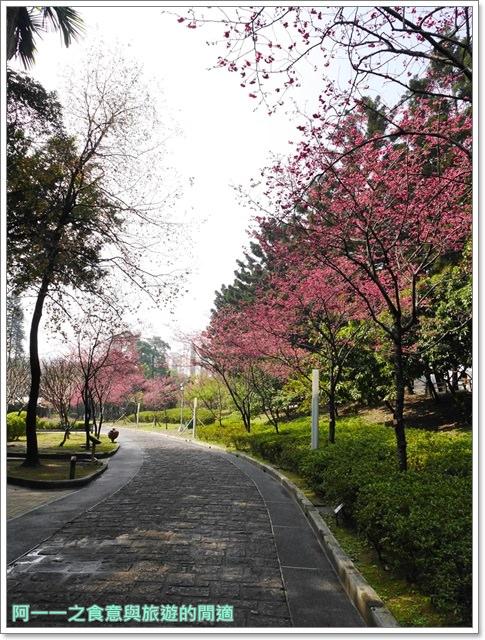 捷運中正紀念堂景點櫻花海綿寶寶暢遊比奇堡特展image061