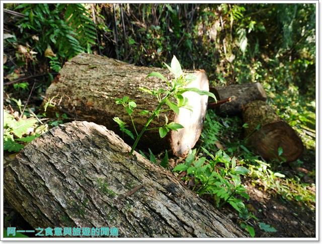 天溪園生態教育中心.陽明山國家公園.親子旅遊.台北好去處image028