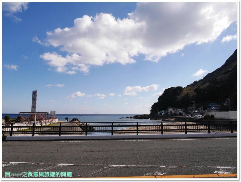 河津櫻.靜岡伊豆.日本自助旅遊.交通.攻略image028