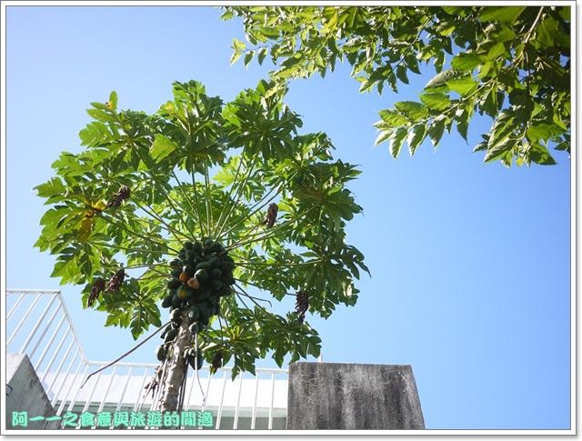 台東住宿民宿田裡的後院鹿野熱氣球image013