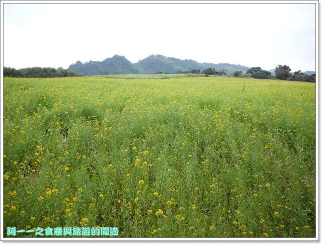 image035初鹿牧場櫻花