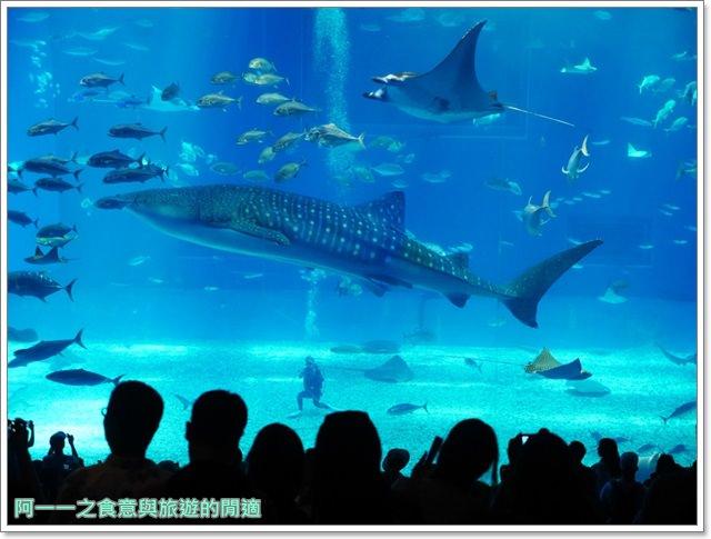 沖繩美麗海水族館.海洋博紀念公園.海豚秀.親子旅遊image043