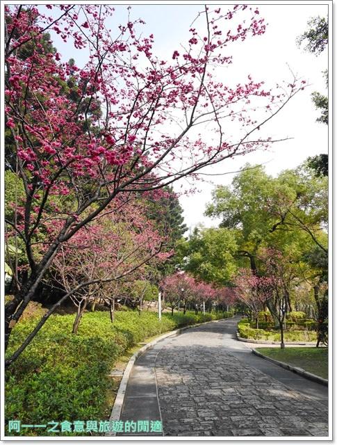 捷運中正紀念堂景點櫻花海綿寶寶暢遊比奇堡特展image060